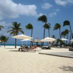 Photo de Bucuti & Tara Beach Resorts Aruba
