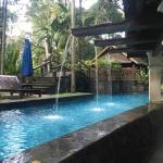 Lovely Pool at Novotel Bogor