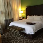 Hampton Inn & Suites New Orleans Downtown (French Quarter Area)照片