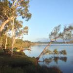 Foto de Lake Weyba Cottages Noosa