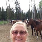 A selfie with some of Deb's amazing horses!