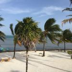 Foto di Exotic Caye Beach Resort