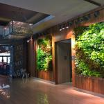 The Westin's Living Green Wall - 100% real!