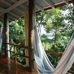 Φωτογραφία: La Loma Jungle Lodge and Chocolate Farm