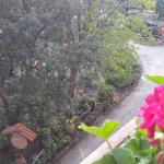 View of gardens from terrace balcony