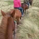 Rossbeigh Beach Horse Riding