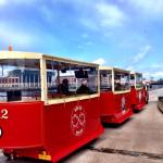 The Wee Tram