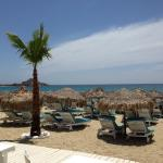 View of the beach from the restaurant