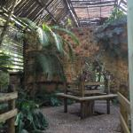 Foto de duPlooy's Jungle Lodge