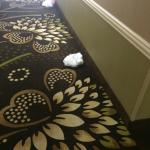 Photo de Hampton Inn Georgetown - Marina