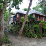 Matangi Private Island Resort의 사진