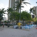 Surf Boards for rent across hotel