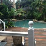 Palm Cove Tropic Apartments resmi