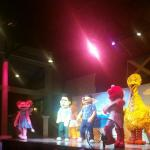 Sesame Street show every night.