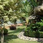 Our relaxing tropical gardens