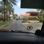 Our drive in to the resort. So lovely