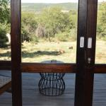 Nambiti Hills Private Game Lodge Foto