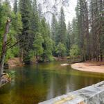 The lovely Merced River meanders near the hotel