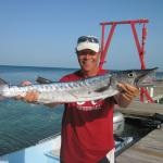 Barracuda at the BML pier
