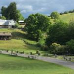 Foto van The Cataloochee Ranch