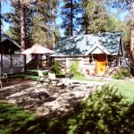 Foto de Black Forest Lodge