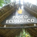 The Eco Walk