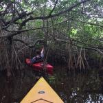Morgenstund in den Everglades. Awesome kayaktour with Randy.
