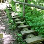 Rustic stairs... very awesome! Imagine this stairs was what was used 100 years ago.