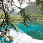 Jiuzhaigou Discovery Private Tour-Day Tour