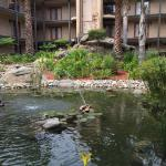 Embassy Suites by Hilton Lompoc - Central Coast resmi