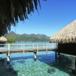 Hilton Moorea Lagoon Resort & Spa照片
