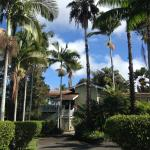 Foto de Areca Palms Estate Bed and Breakfast