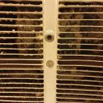 Filthy Bathroom Ventilation Fan