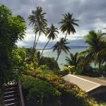 Coconut Grove Beachfront Cottages Taveuni Island