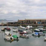 The harbour at Lyme
