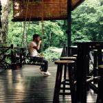 Tabin Wildlife Resort resmi