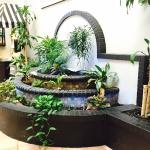 Lush fountain garden is the focal point in our lobby