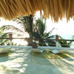 Photo de Beachfront Hotel La Palapa