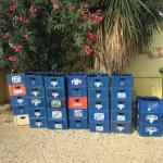The DiveHut Foto