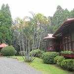 Foto van Hale Ohia Cottages
