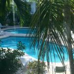 Pool by day (our balcony view)