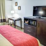Comfort Inn & Suites Near Universal - N. Hollywood - Burbank Foto