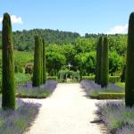 Discover Provence-Private Day Tours