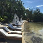 Photo de Little Palm Island Resort & Spa, A Noble House Resort