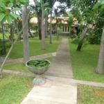 Morning Star Guest House Foto