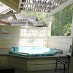 Mineral Springs Spa Tub on Deck