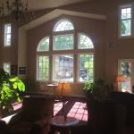 Gorgeous windows in great room