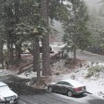 Foto Yosemite's Scenic Wonders Vacation Rentals