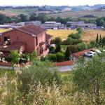 Beautiful Siena outskirts.