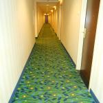 Courtyard by Marriott Toronto Downtown Foto